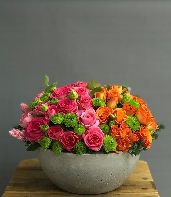 Renkli Güller